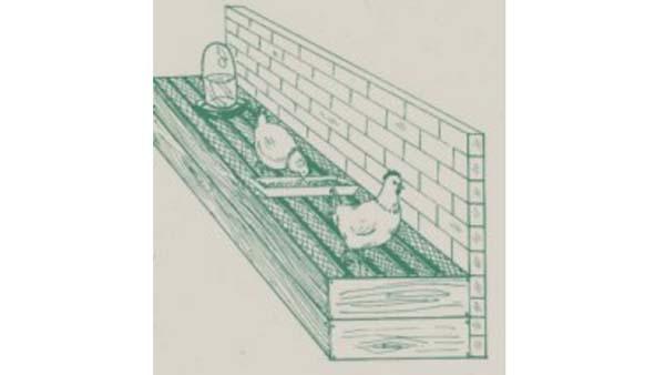 Raccoglifeci per avicoltura