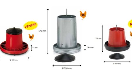 Poultry feeder: features and history