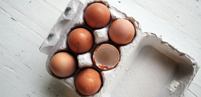 Etichettatura delle uova