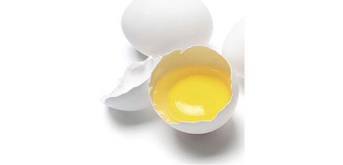 Uova fecondate da allevamento